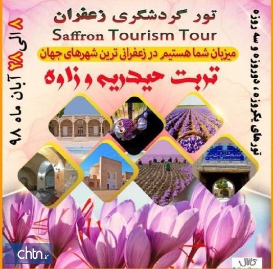 تربت حیدریه و زاوه میزبان تورهای گردشگری زعفران