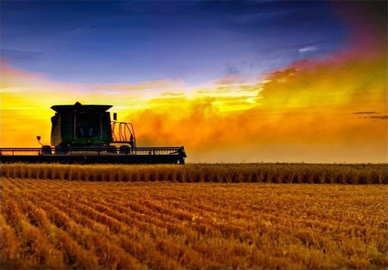 چین، فراوری میلیاردی با توسعه کشاورزی خانواده محور