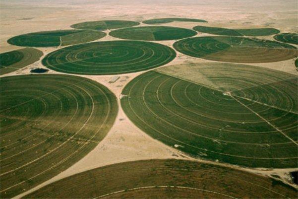 گردشگری کشاورزی در مشگین شهر توسعه یابد