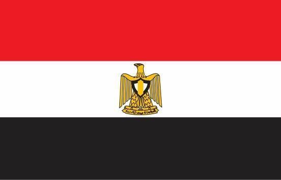 2 سال حبس مجازات شایعه پراکنان درباره کرونا در مصر