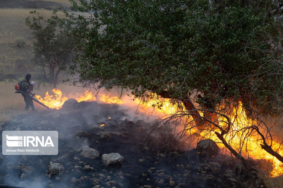 خبرنگاران افزایش 1.5 برابری آتش سوزی مناطق حفاظت شده کشور در 6 ماهه اول سال