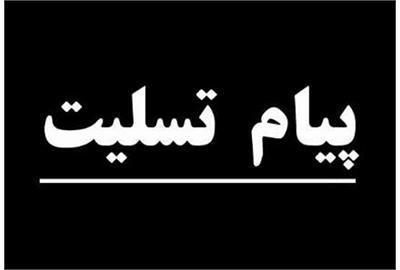 تسلیت وزیر تعاون،کار و رفاه اجتماعی به اکبر شوکت
