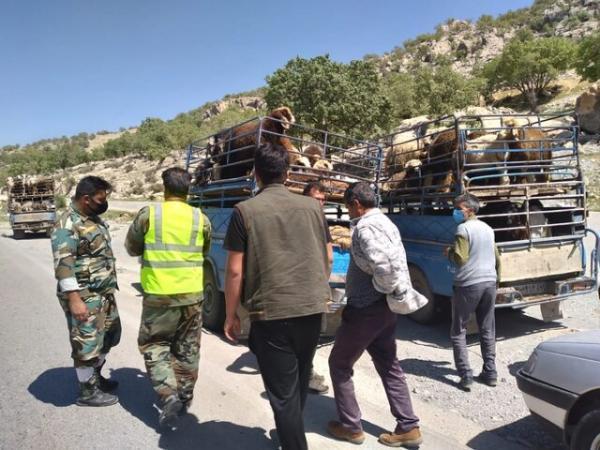 ممنوعیت ورود عشایر به مناطق ییلاقی شهرستان بویراحمد قبل از 15 اردیبهشت
